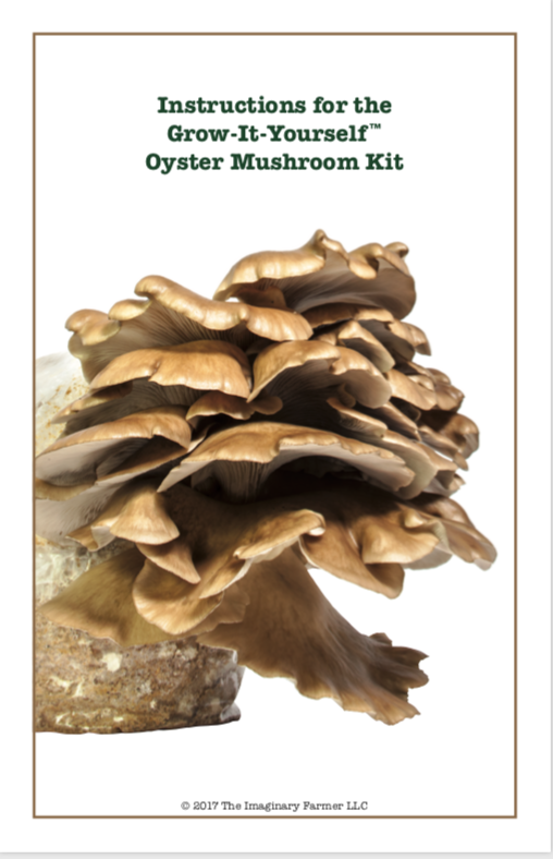 Booklet Cover: Instructions for the Grow-it-Yourself Oyster Mushroom Kit